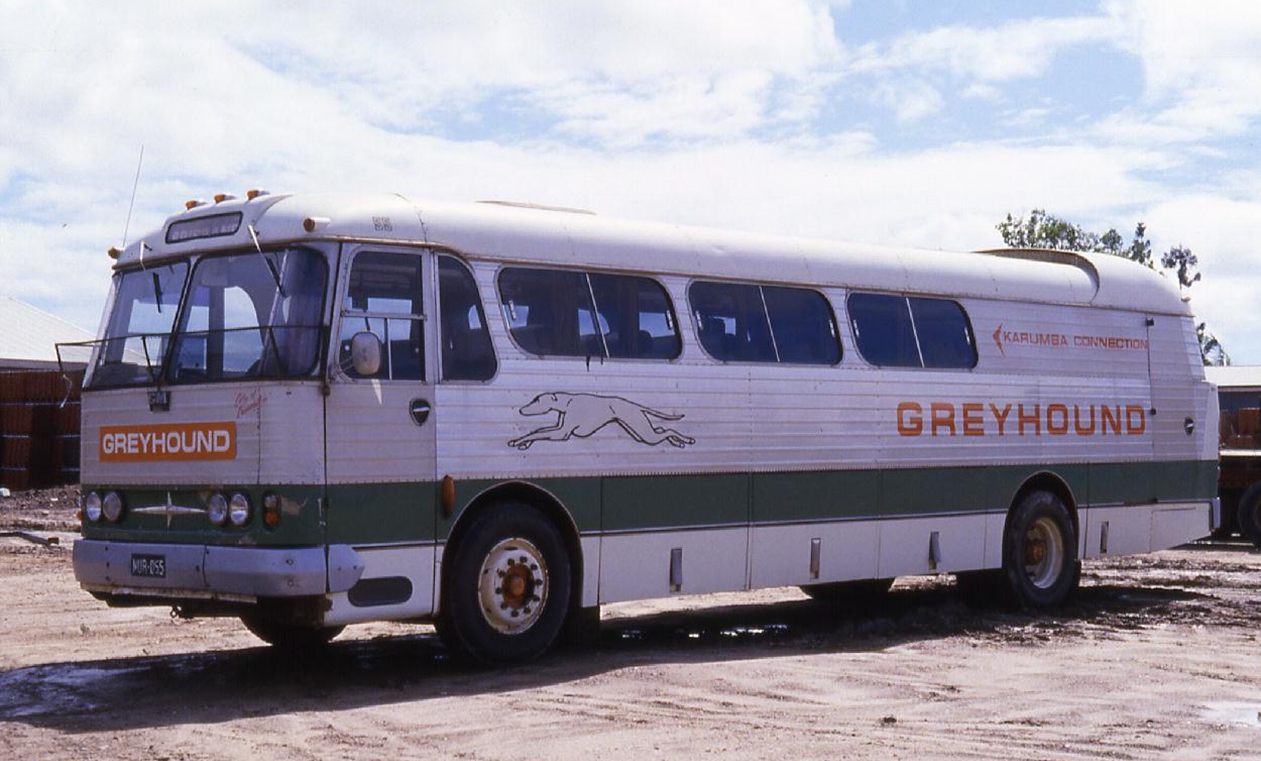 Denning double decker for sale - Greyhound Coaches 55 Nur 055 Was A 1964 Denning Bodied Albion Clydesdale With Gm Engine Fitted With 37 Coach Seats And Rear Freight Compartment Geoff